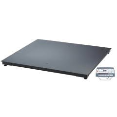 DF Series Floor Scales (300kg-3000kg)