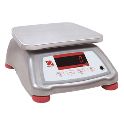 Stainless Steel Compact Bench Scale V22XWE3T